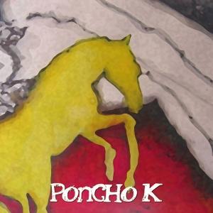 Poncho K Caballo de Oro